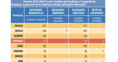 En julio se crearon en Andalucía tantas empresas como en el mismo mes de 2019 pese a la crisis sanitaria<br/><span style='color: #077dbc;font-size:65%;'>En 2020, datos acumulados de enero a julio, se han constituido un total de 7.389 sociedades, en tanto que en Granada el número de empresas que se han puesto en marcha ha sido de 687, de las que 122 se han registrado en el mes de julio</span>
